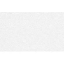 Tapetes Flizelīna 1,06m / 3914-01 Krāsošanai
