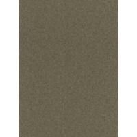 Tapetes Flizelīna ERISMANN 5813-49