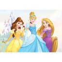 70-588 Princess