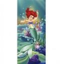 FTD 0240 Ariel