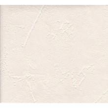 Tapetes Flizelīna 1,06m/4124-02